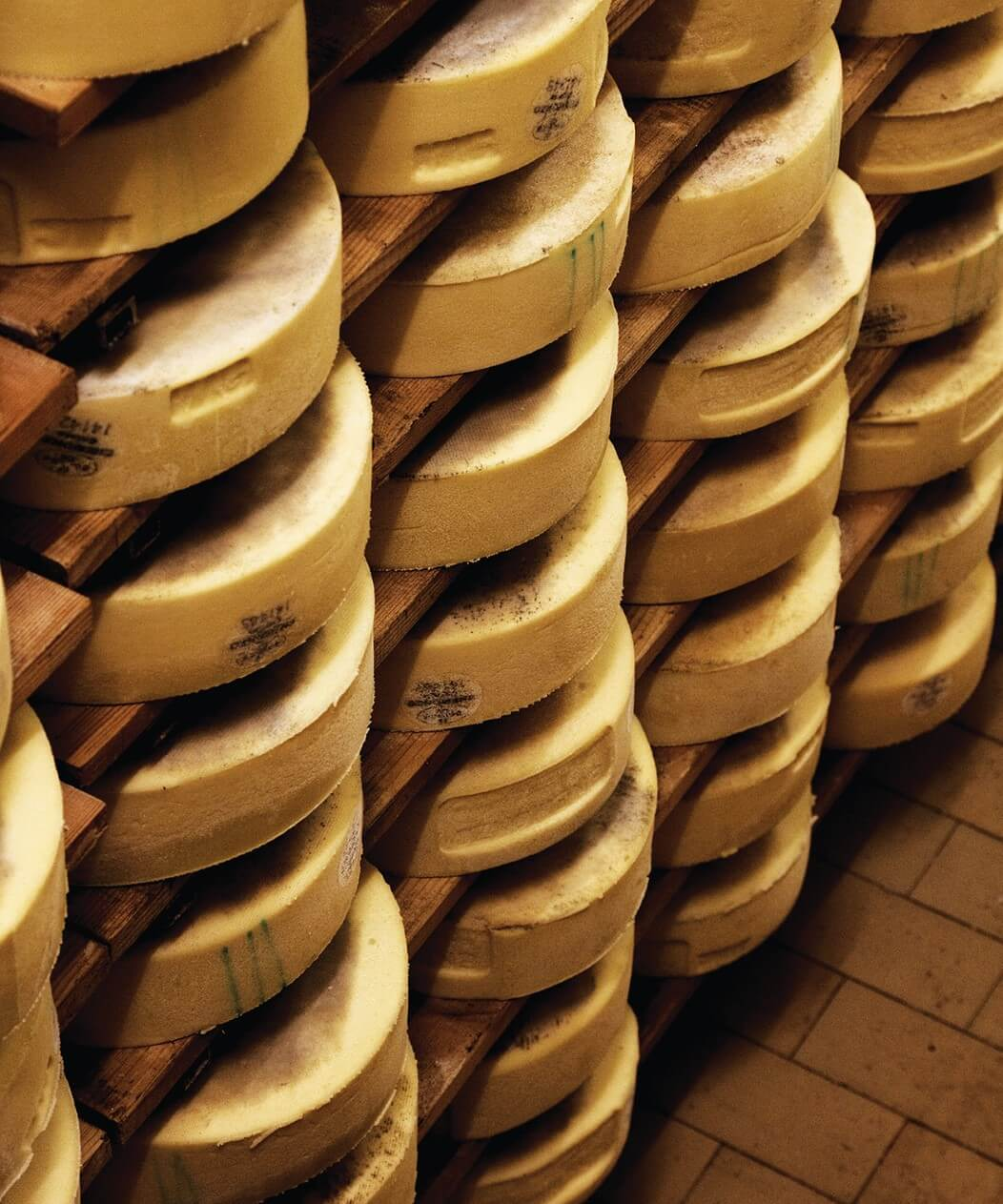 Wheels of cheese ageing