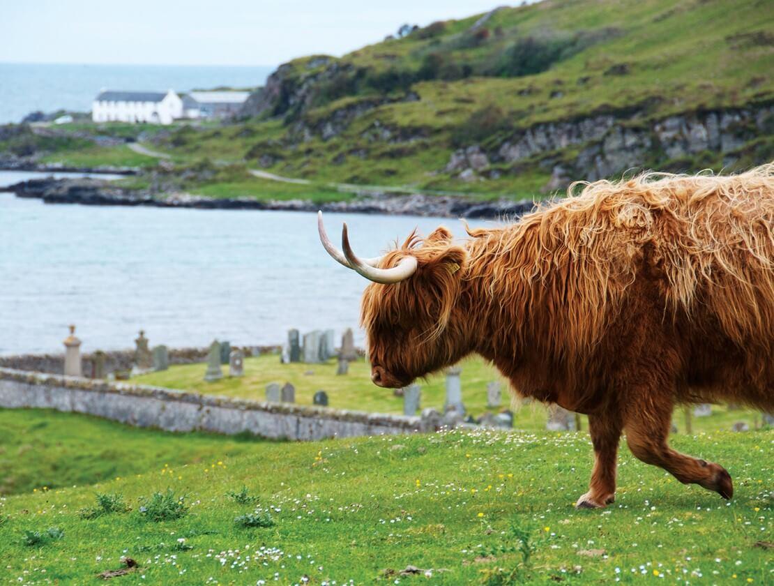 1st Place. Name: Janne Vuorinen  |  Location: Mull of Oa, Islay